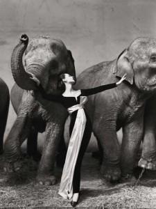ثبت گرانترین عکس دنیا به نام «ریچارد اودون»