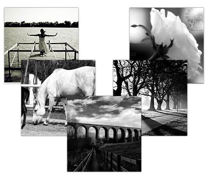 Photo of علت جذابیت عکس های سیاه و سفید در گذر زمان